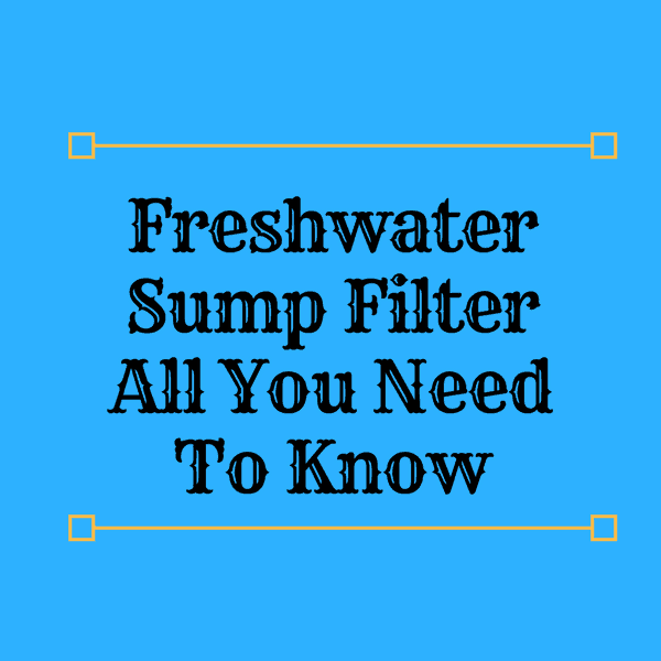 freshwater sump filter what why and how expert aquarist