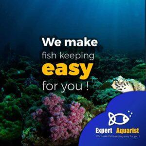 Expert Aquarist