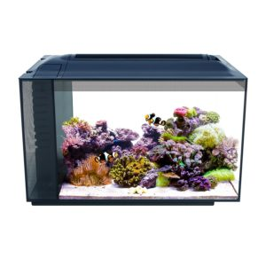 Fluval Sea Evo XII Aquarium Kit