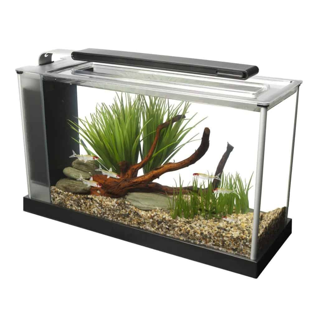 Fluval Spec V Aquarium Kit Review