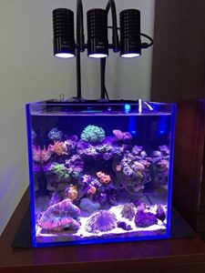 Marine LED light coral SPS LPS grow