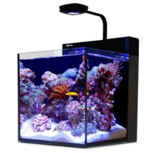 best nano reef tank reviews top picks guide 2019
