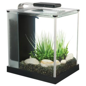 fluval spec iii review