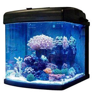 jbj 28 gallon nano cube review