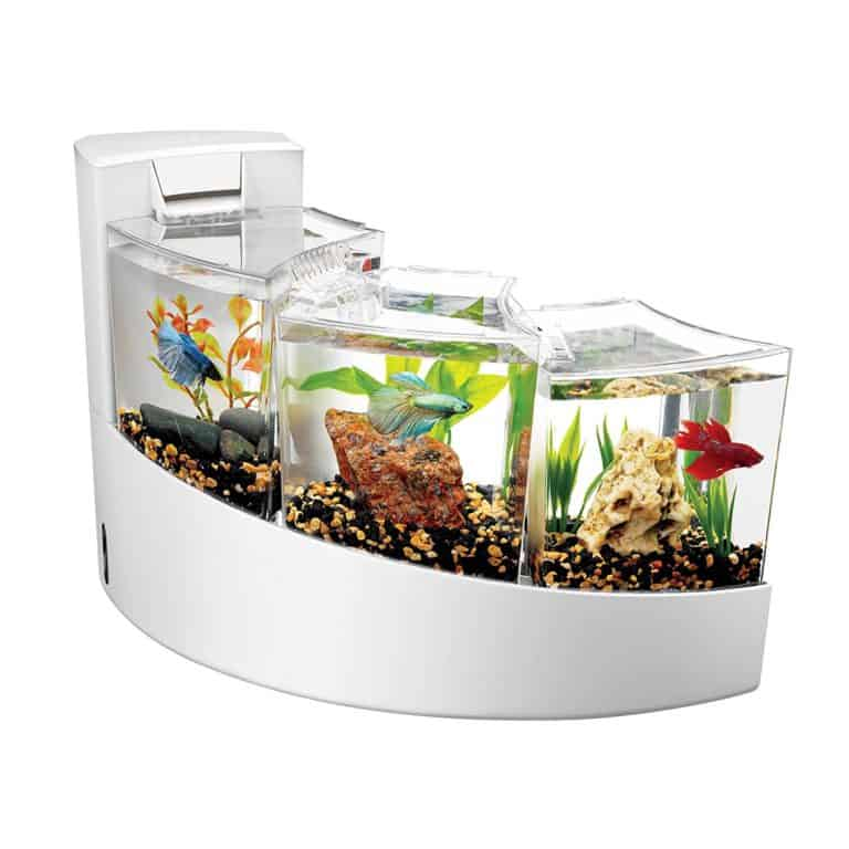 Aqueon Betta Falls Review: Why We Don't Like It