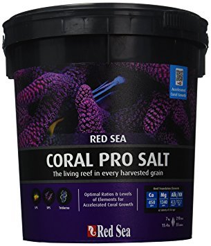 Red Sea Coral Pro Review