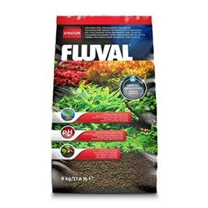 fluval stratum review