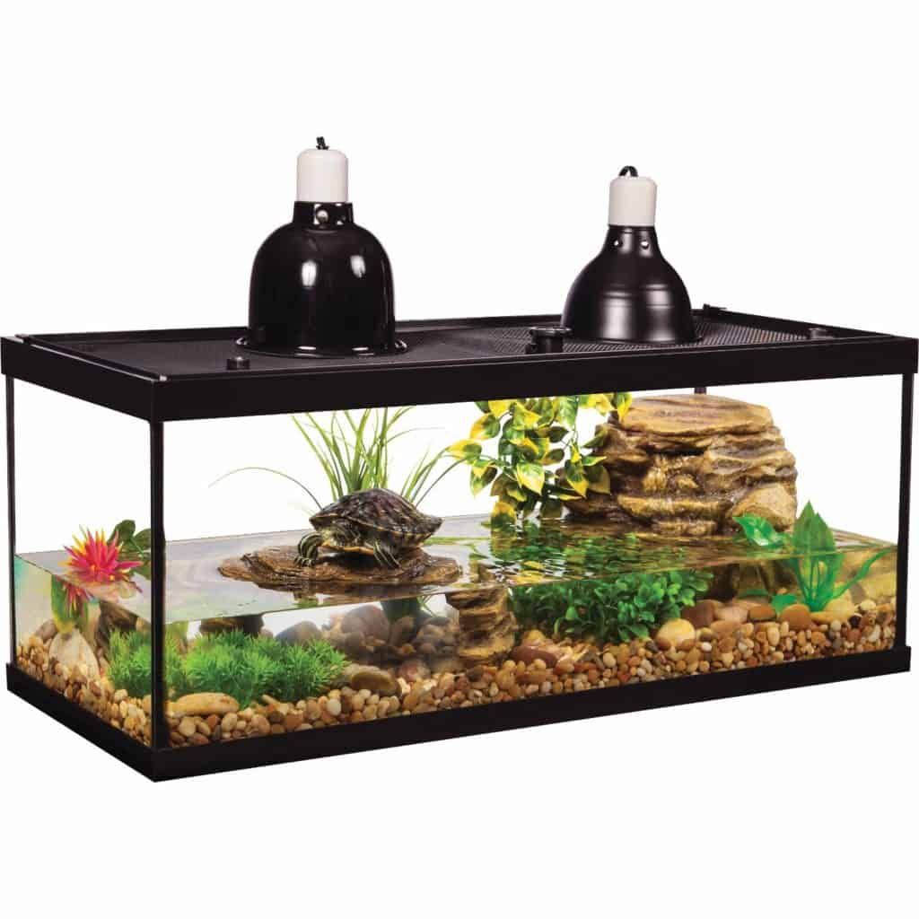 Best Turtle Tank Setup Definitive Guide Tank Reviews