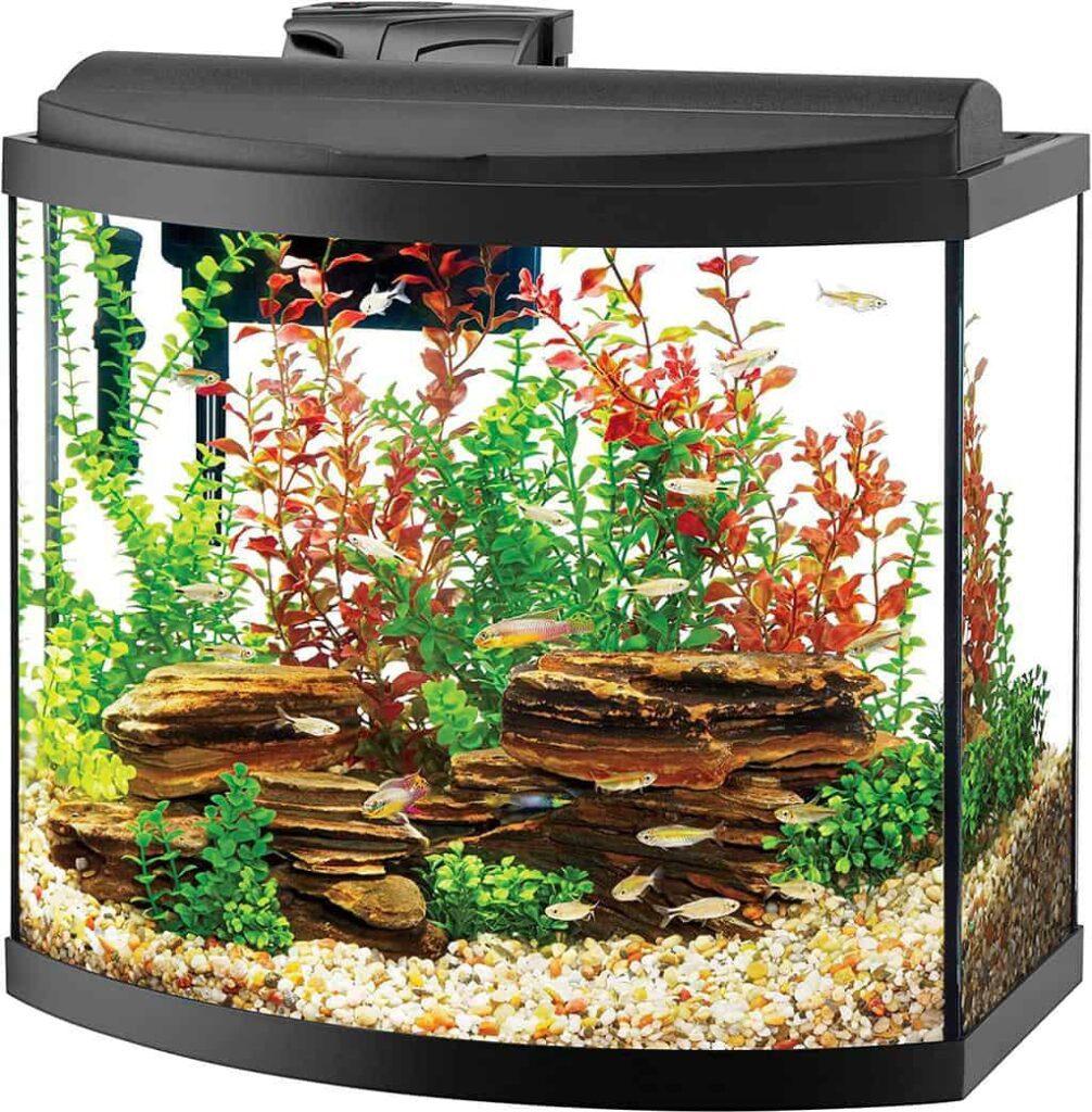 Aqueon Deluxe LED Bow Front Aquarium Kit