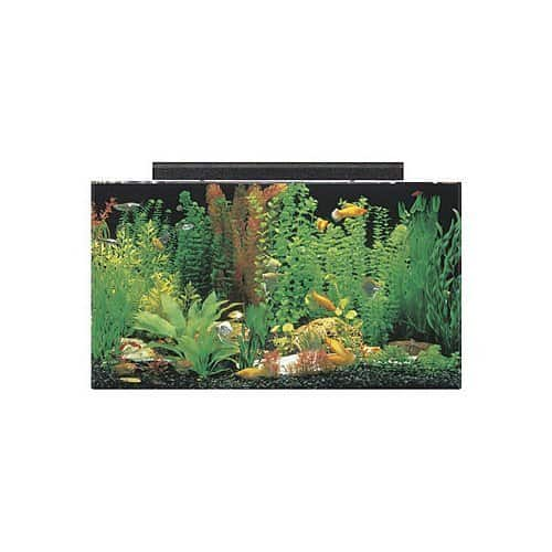 SeaClear 50 Gallon Acrylic Aquarium Combo Set