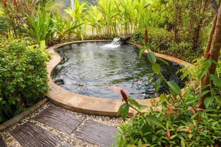 Top 10 Best Pond Aerator Kits Reviews: [Small Pond, Large Pond & Koi Pond]