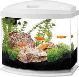 Aqueon LED MiniBow Aquarium Kit