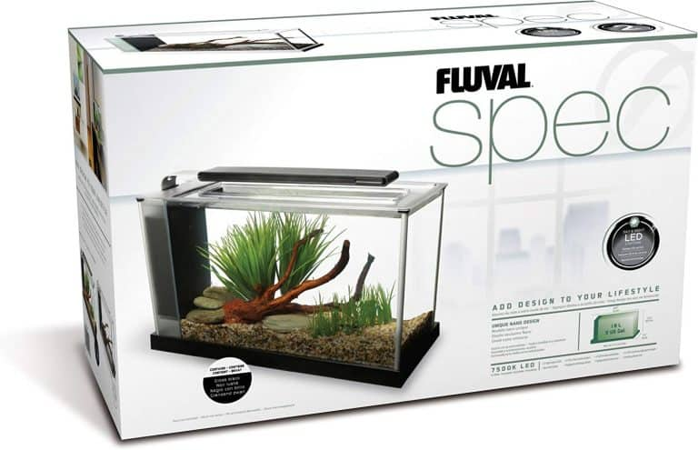 Fluval Spec V Review: 5 Gallon Aquarium Starter Kit for Betta