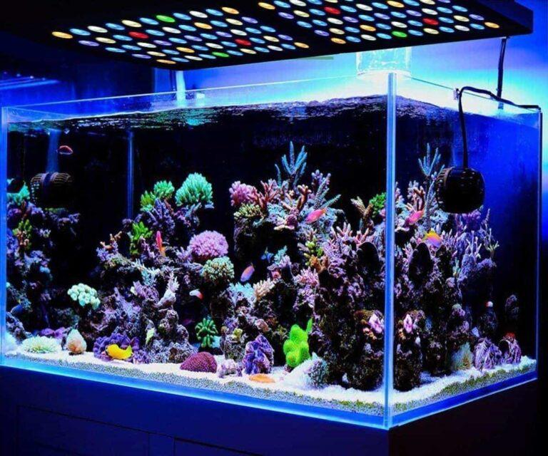 MarsAqua LED Review: Aquarium Light For Coral Reef