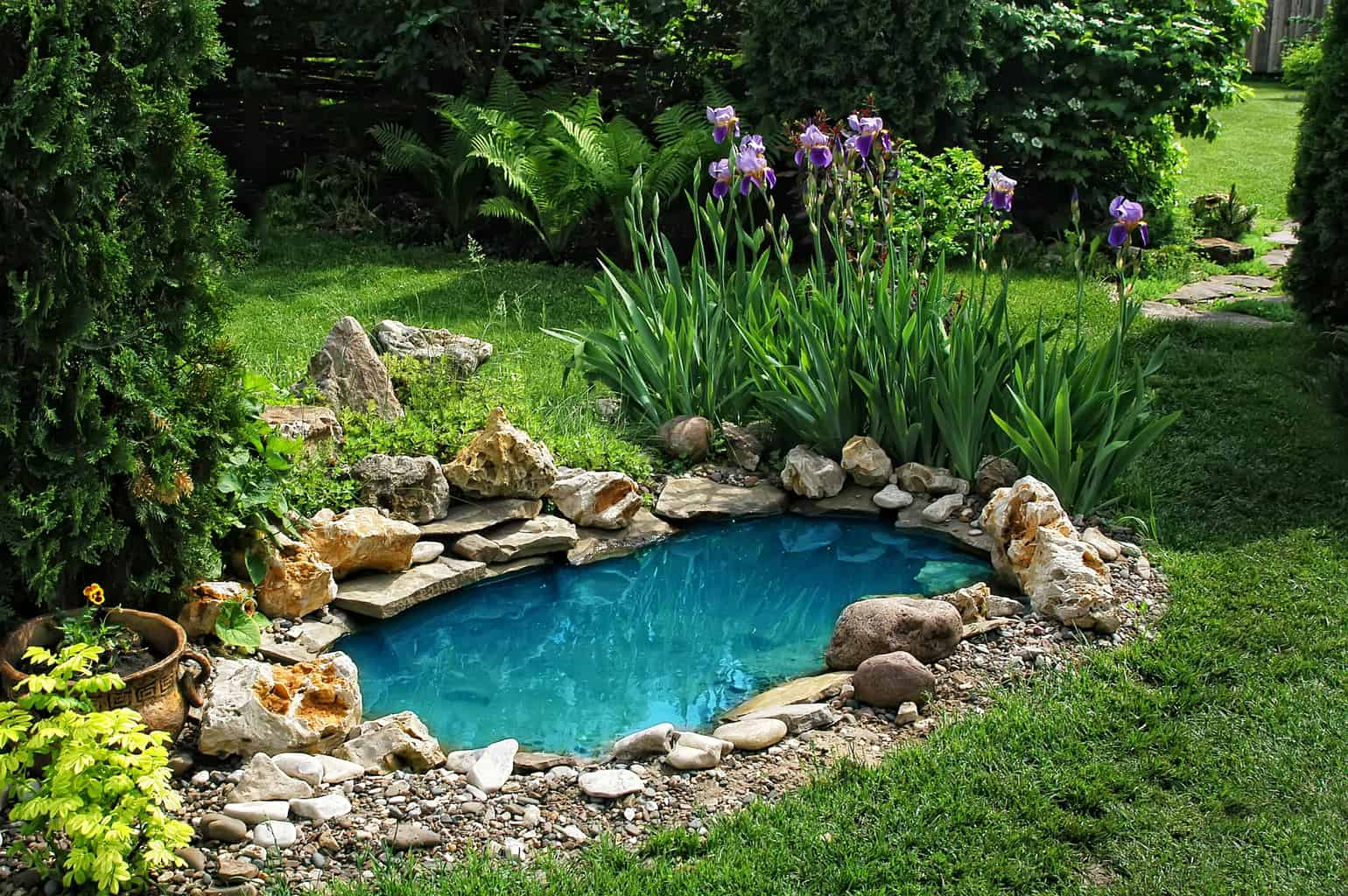 How to seal a pond naturally