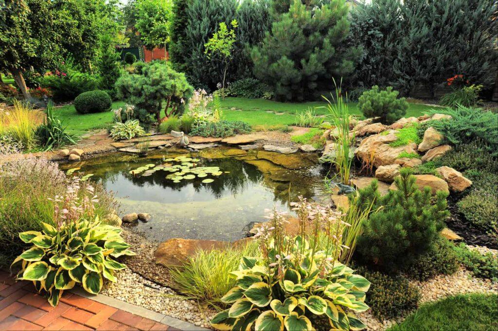 How to install a pond pump