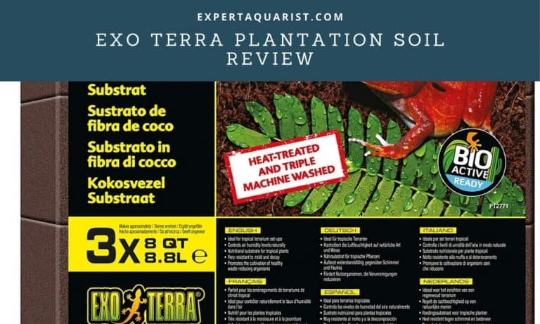 Exo Terra Plantation Soil Review: Substrate For Tropical Terrarium