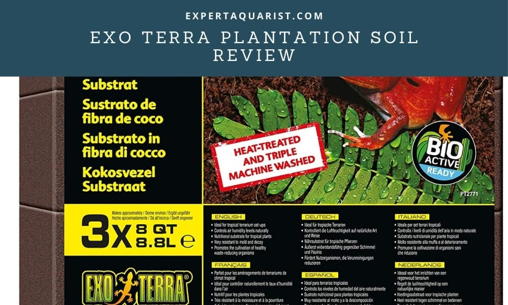 Exo Terra Plantation Soil Review