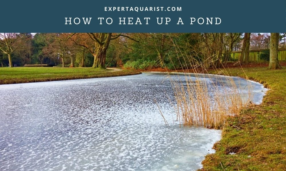 How to heat up a pond
