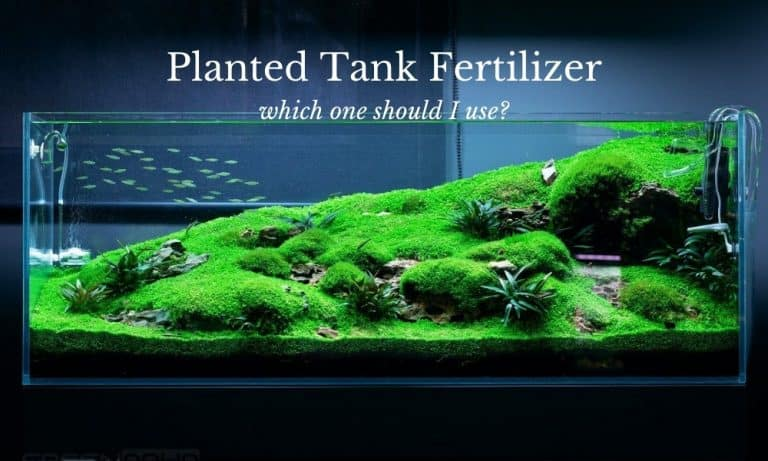 APT Zero Vs. APT Complete Vs. APT EI: Which Planted Tank Fertilizer should I use