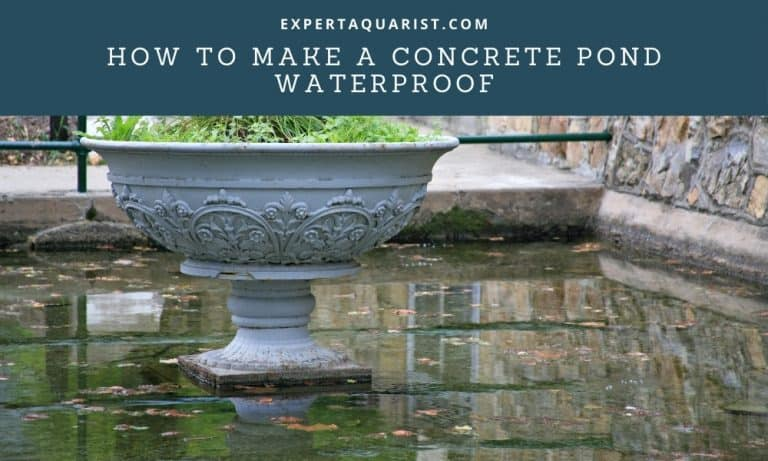 How To Make A Concrete Pond Waterproof: 2 Quick Solutions