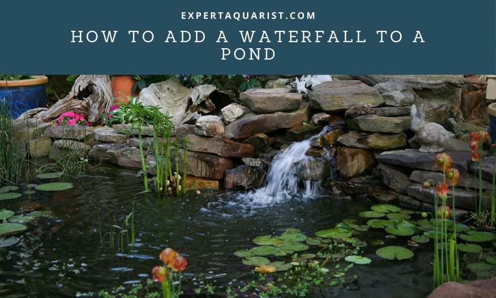 How to add a waterfall to a Pond
