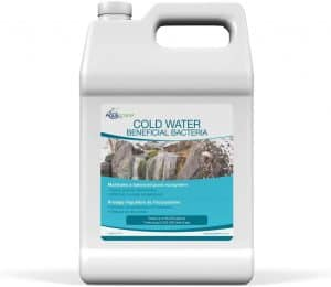 Beneficial Bacteria for Pond