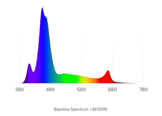 showing only the appearance of the spectrum