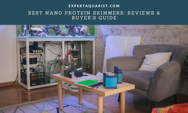 Best Nano Protein Skimmers: [Reviews, Comparison & Buyer's Guide]