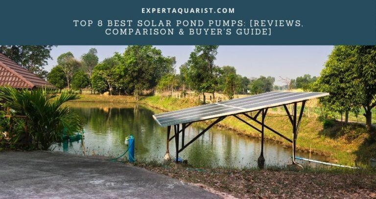 Top 8 Best Solar Pond Pumps: [Reviews, Comparison & Buyer's Guide]