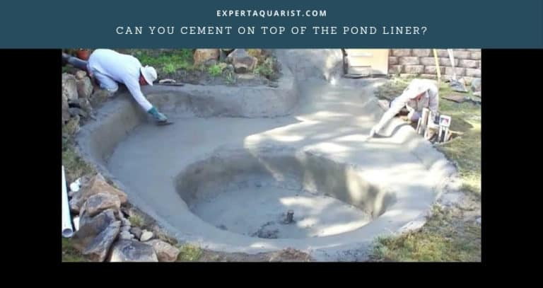 Can You Cement On Top Of The Pond Liner?
