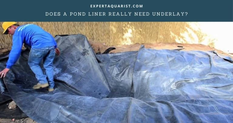 Does A Pond Liner Really Need Underlay?
