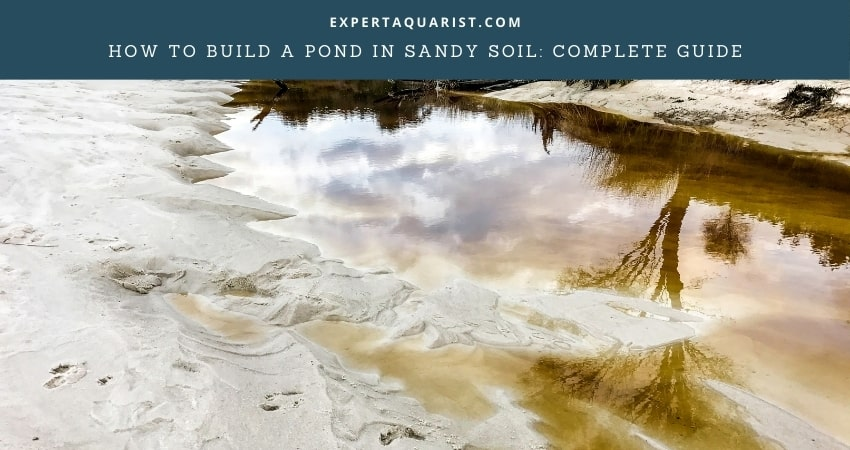How To Build A Pond In Sandy Soil