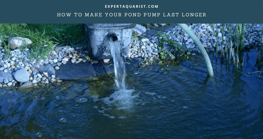 How To Make Your Pond Pump Last Longer