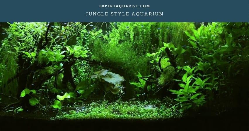 Jungle Style Aquarium