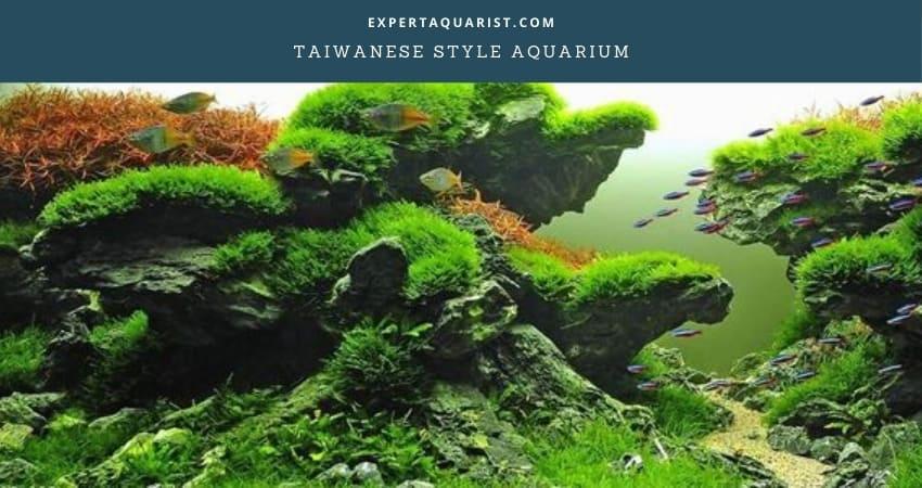 Taiwanese Aquarium