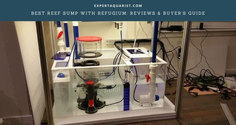 Best Reef Sump With Refugium